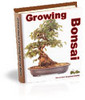 Thumbnail Grow Bonsai
