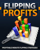 Thumbnail Flipping Profits (Master Resale Rights included)